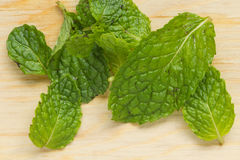 Mint for cook. Mint leaves on wood chopping block Royalty Free Stock Photos