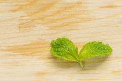 Mint for cook. Mint leaves on wood chopping block Royalty Free Stock Photo