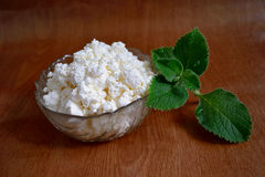 Mint and cottage cheese stock photography