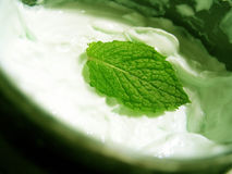 Mint Cream Royalty Free Stock Photos
