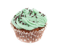 Mint Cupcake Royalty Free Stock Photography