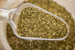 Mint dried Stock Images