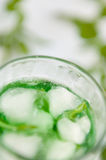 Mint drink Royalty Free Stock Photos
