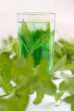 Mint drink Royalty Free Stock Images