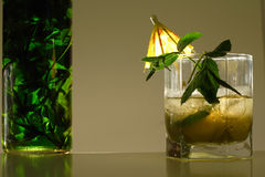 Mint drink Stock Images