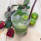 Mint drink water from natural cool. Stock Images
