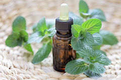 Mint essential oil Royalty Free Stock Photos