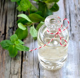 Mint essential oil Stock Image