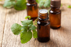 Mint essential oil Stock Photo