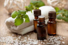 Mint essential oil Royalty Free Stock Photography