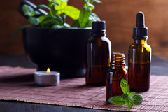Mint essential oils Stock Photography