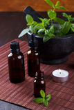 Mint essential oils Royalty Free Stock Photos