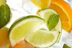 mint för citrussnittleaf royaltyfri foto