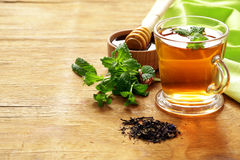 Mint flavored tea in a cup Stock Photography