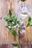 Mint flower in glass Royalty Free Stock Images