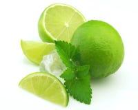 mint för citruskubis Royaltyfri Bild