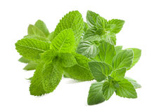 Mint Royalty Free Stock Photography
