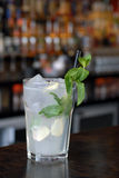 Mint and Ginger cocktail Royalty Free Stock Images