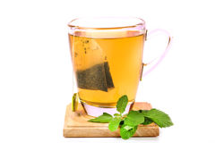 Mint green tea Stock Photography