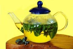 Mint herbal tea stock photos