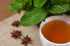 Mint herbal tea. Golden herbal tea with mint leaves and anis stock image