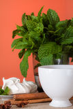 Mint herbal tea with cookies. Golden herbal tea with cookies, mint leaves and anis Royalty Free Stock Image