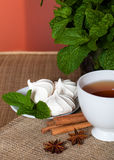 Mint herbal tea with cookies. Golden herbal tea with cookies, mint leaves and anis Royalty Free Stock Photography