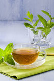 Mint Herbal Tea Royalty Free Stock Photos