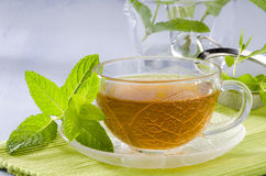 Mint Herbal Tea Stock Images