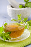 Mint Herbal Tea Stock Image