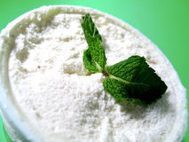 Mint Ice Cream 2. Mint leaves and vanilla ice cream stock photo