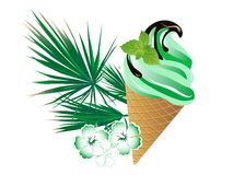 Mint ice cream Royalty Free Stock Photography