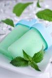 Mint ice cream Royalty Free Stock Image