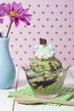 Mint ice cream Stock Photo