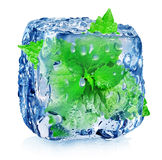 Mint in ice cube Royalty Free Stock Photo