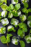 Mint ice cubes with fresh mint leaves Stock Image