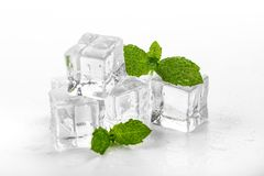mint and ice cubes on white background stock photography