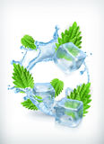 Mint with ice cubes and water splash Stock Photos