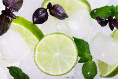 Mint and ice Stock Image