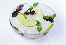 Mint and ice Royalty Free Stock Photos