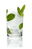 Mint ice vodka Stock Images