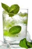 Mint ice vodka Royalty Free Stock Image