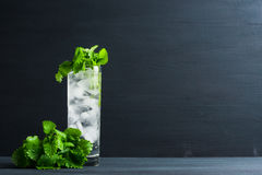 Mint julep in glass Stock Image