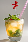 Mint Julep Royalty Free Stock Images