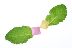 Mint Leaf And Chewing Gum Stock Photography