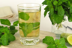 Mint leaf, aromatic herbs. Used as ingredients to make ice cream and herbal teas royalty free stock photo