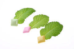 Mint leaf and chewing gum Stock Photos