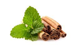 Mint leaf and cinnamon isolated on white background royalty free stock photos