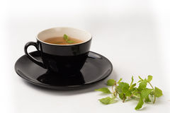Mint leaf hot tea in cup Stock Images