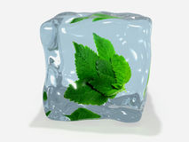 Mint leaf in ice Royalty Free Stock Photography